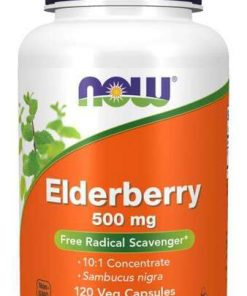 Elderberry, 500mg – 120 vcaps all products on buy tester UKTSG bodybuilding supplements